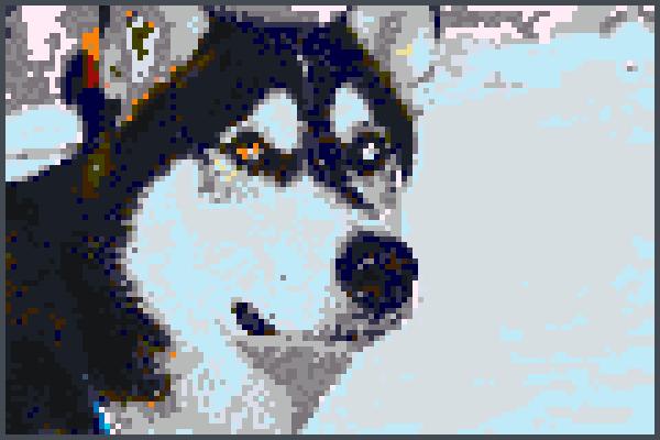 pixel art husky